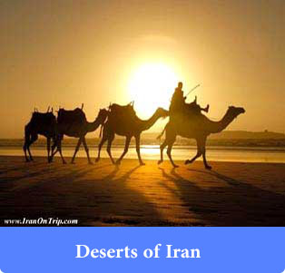 Deserts of Iran - Trip to Iran