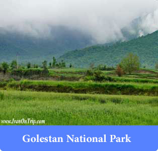 Golestan National Park - Forests of Iran